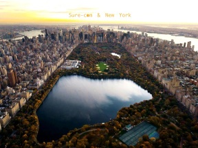 surecom & new york_n