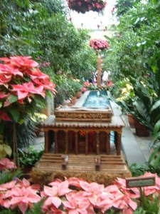 Botanic Gardens 12-25-2009 166