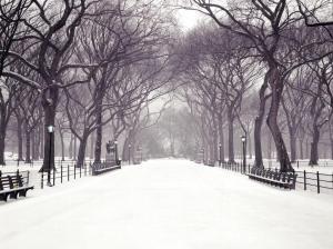 New York -inverno
