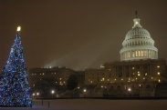 United_States_Capitol_Christmas_tree_lighting_ceremony_-_December_5,_2007