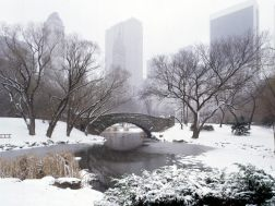 Central-Park-in-Winter-New-York-City-New-York