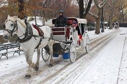 central-park-snow-01
