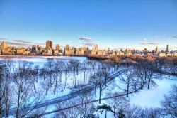 new-york-winter-ariane-moshayedi