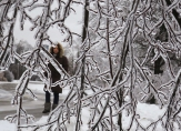 A woman walks past ice encrusted trees following an ice storm in Toronto