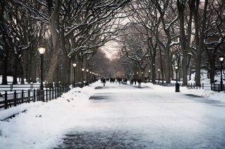 Winter Desktop Wallpaper New York