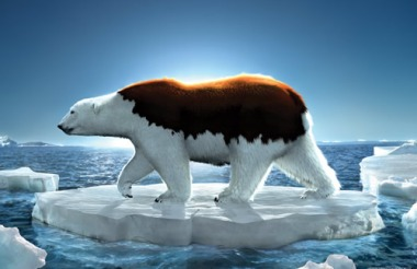 global-warming-posters.jpg?w=529
