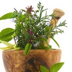 1261424138_herbal1-ed