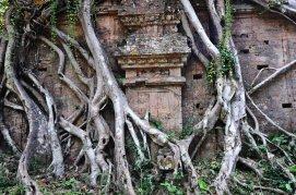 cambogia_1zgc5.T0