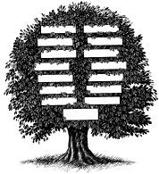 genealogy-1