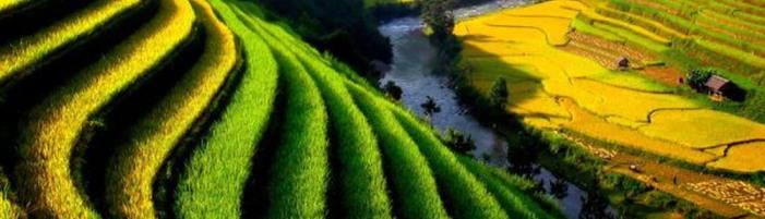 viaggio-vietnam