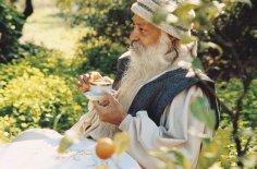 osho-on-vegetarian-food-meditation8