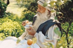 osho-on-vegetarian-food-meditation8