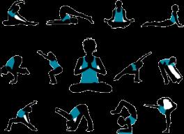 Varieties-of-Hatha-yoga