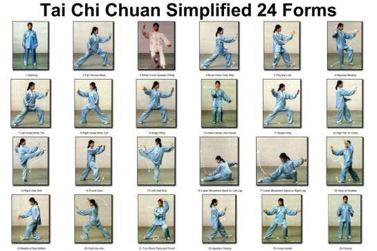 Image result for Tai Chi and Qigong
