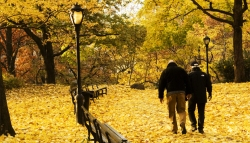 autumn-in-new-york