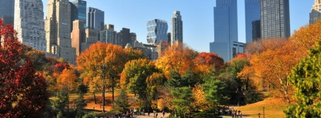 Central-Park-a-New-York-durante-Autunno-315x851