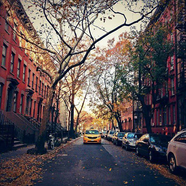 west-village-foliage-d-autunno