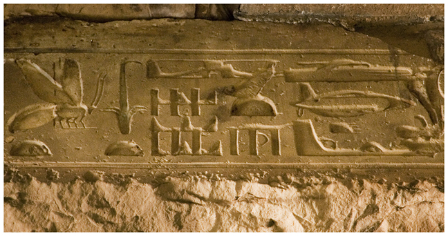 heiroglyphs_of_abydos_depicting_aircraft1