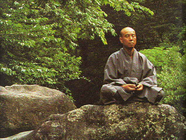 a history of zen Zen buddhism is a branch of mahayana buddhism in this manual, we will give you a brief introduction of zen buddhism, along with its complete history.