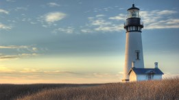 Lighthouse-in-Field